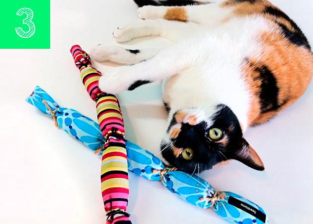 DIY guays para nuestras mascotas